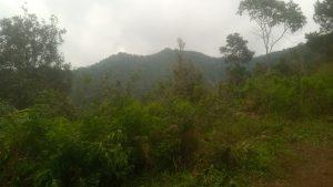 Puncak bukit gunung kerenceng